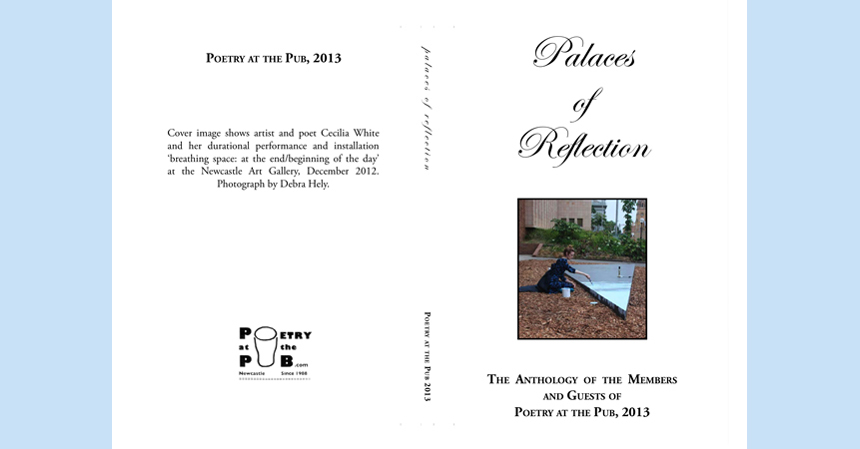 Palaces of Reflection_2013_Picaro Press